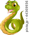 ヘビ 蛇 は虫類のイラスト 44369936