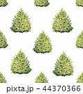 樹木 樹 ツリーのイラスト 44370366