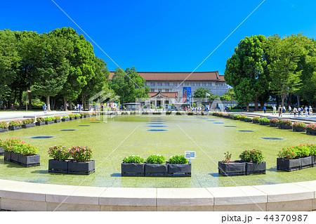 東京 上野公園 竹の台広場 44370987