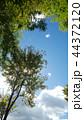 青空 秋 雲の写真 44372120