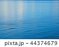 海 波 水面の写真 44374679