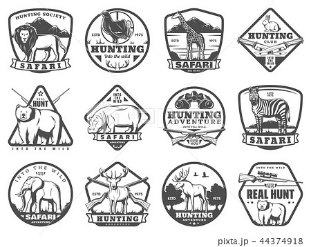 Wild and safari animals hunting icons 44374918
