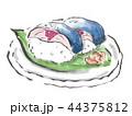 鯖寿司 44375812