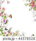 お花 フラワー 花のイラスト 44378528