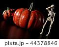 ハロウィン ハロウィーン 骸骨の写真 44378846