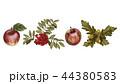 りんご リンゴ ナナカマドのイラスト 44380583