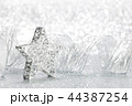 クリスマス スター 星の写真 44387254