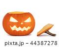 かぼちゃ カボチャ 南瓜の写真 44387278