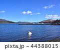 山中湖-27115 44388015