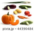 食べ物 食 料理のイラスト 44390484