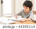 子供 男の子 少年の写真 44395114