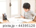 子供 男の子 少年の写真 44395120