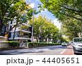 東京 表参道 44405651