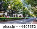 東京 表参道 44405652