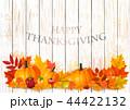 サンクスギビングデー 収穫感謝祭 感謝祭のイラスト 44422132