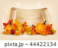 かぼちゃ カボチャ 南瓜のイラスト 44422134