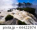 ブラジル イグアス 滝の写真 44422974