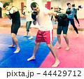 ボクサー 拳闘 テブクロの写真 44429712