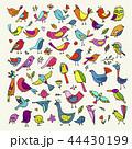 鳥 ベクター キャラクターのイラスト 44430199
