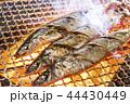 秋刀魚 44430449