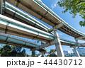 辰巳ジャンクション 辰巳JCT ジャンクションの写真 44430712