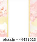 和柄 桜 ピンクのイラスト 44431023