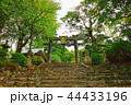 銅鳥居 鳥居 参道の写真 44433196