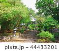 銅鳥居 鳥居 参道の写真 44433201