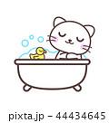 ネコ かわいい お風呂のイラスト 44434645