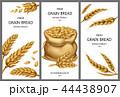 穀類 一粒 穀物のイラスト 44438907