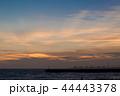 マジックアワー 夕焼け 夕暮れの写真 44443378