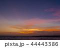 マジックアワー 夕焼け 夕暮れの写真 44443386