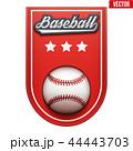 ベースボール 白球 野球のイラスト 44443703