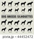 わんこ 犬 人影のイラスト 44452472