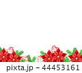 ポインセチアの背景 44453161