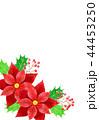 ポインセチアのクリスマスカード 44453250