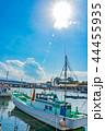 沼津港 漁船 漁港の写真 44455935