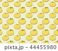 ゆずのパターン 44455980