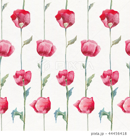 Poppies. Hand drawn Floral pattern 44456418