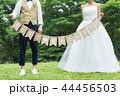 ウェディング ウエディング 結婚の写真 44456503