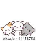 猫 白猫 三毛猫のイラスト 44458758