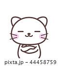 考える白猫 44458759