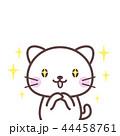 感動する白猫 44458761
