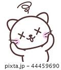 目が回る白猫 44459690