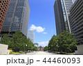行幸通り 東京駅 丸の内駅舎 44460093