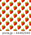 44462040