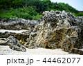 海沿い 海浜 ビーチ 44462077