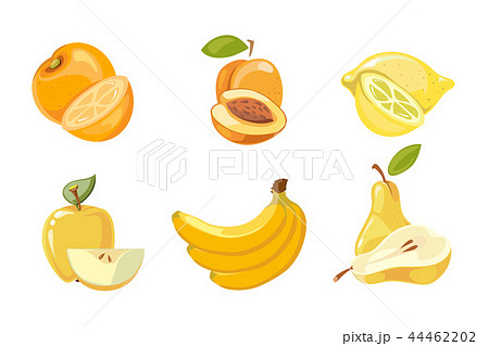 Vector yellow fruits collection isolated over white 44462202