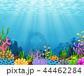 水上 水中 水生のイラスト 44462284