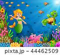 Cartoon mermaid underwater with turtle and octopus 44462509